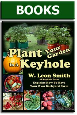 plant your garden 03