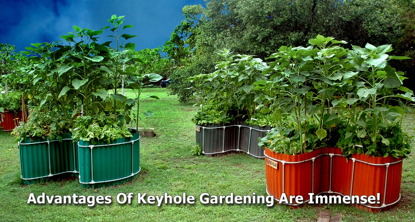 Keyhole Garden Kits by Keyhole Farms | Raised Bed & Compost Basket