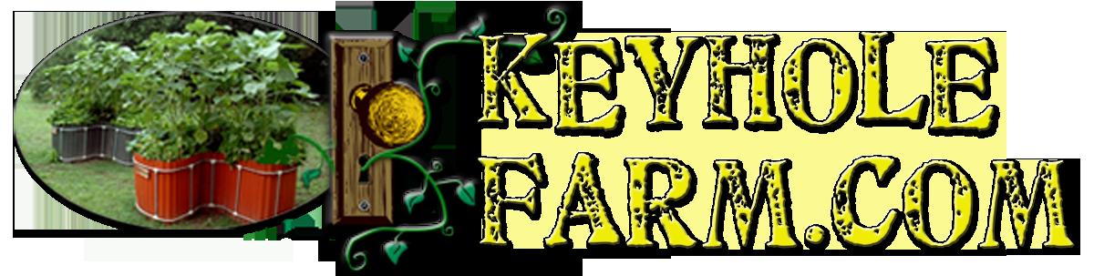 keyhole web heading 2017 - X