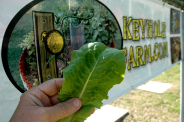 'News-Gazette' Features Keyhole Farm Gardens